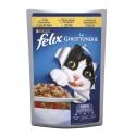 Felix le Ghiottonerie - in Gelatina con Pollo e Pomodoro