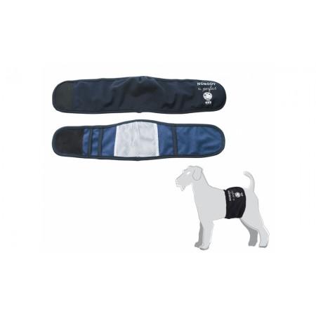 Camon Fascia Igienica Per Cani Maschi