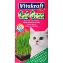 Vitakraft Cat Grass Erba Gatta in Semi