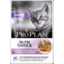 Pro Plan Junior Nutrisavour in Salsa con Tacchino