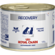 Royal Canin - Recovery Cane/Gatto